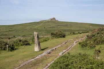 Dartmoor is within a short car drive from Drovers Cottage. Very much worth a day out.