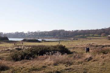 This now popular National Trust land was originally the Islands first golf course, what a beautiful location for a spot of golf!