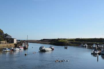 Nearby Axmouth is very tranquil and has two pubs.