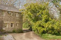 Winwalloe Cottage - Holiday Cottage - 6.2 miles NW of Looe