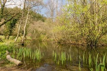 This is a haven for wildlife and a wonderfully restful place to pass a tranquil hour or two.