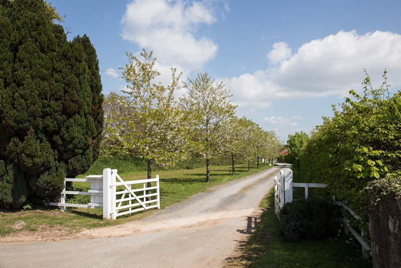 Your holiday starts here. Turn into this lovingly maintained driveway which leads you through the Kenton Park Estate grounds and directly to The Vineyard Retreat.