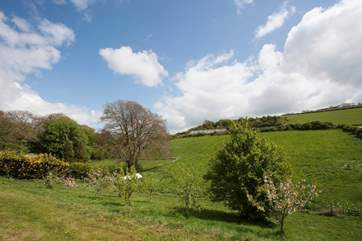 The guests have access to a large field and the orchard, great for the children to let off steam
