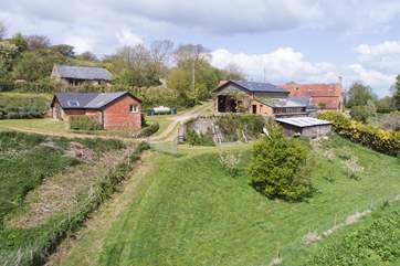 A view of the orchard that the guests are more than welcome to walk around