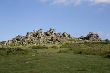 Even closer to Oak Cottage is the infamous Dartmoor National Park. This is a 'must do' day out. A fabulous day out for the whole family.