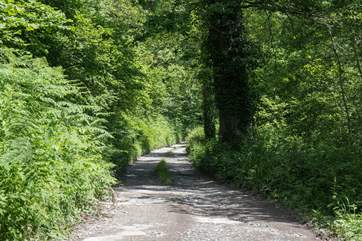 The driveway leading up to Oak Cottage requires a 5mph speed limit due to the un-even and bumpy surface.