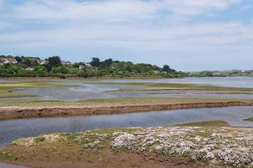 Nearby Hayle Estuary is a bird watchers paradise.