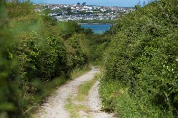 This is the track that leads down to the Camel Trail.