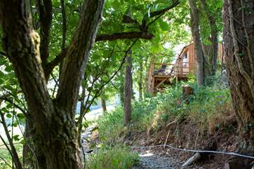 Catch your first exciting glimpse of the cabin from the path.