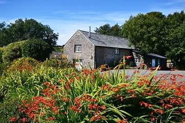 The stunning Lower Willsworthy Cottage.