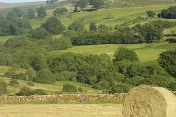 Hay making time.