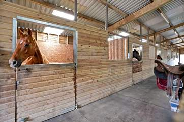 A visit to the stables proves a real treat for the younger members of your party.