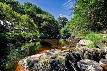 The beautiful River Tavy flows through the grounds of Lower Willsworthy.