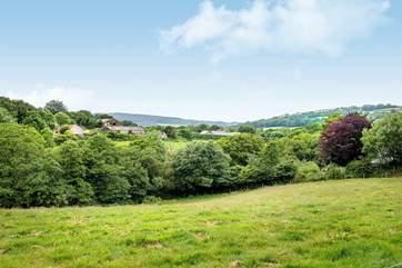 Lowen Gwel enjoys views over the countryside towards Grogley woods.