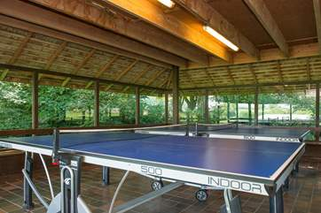 Table-tennis - always a holiday favourite.