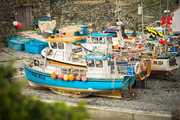 The colourful fishing boats at Cadgwith Cove, why not buy some fish or shellfish when you visit, it doesn't get much fresher direct from the fishermen.