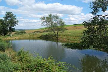 At the bottom of the hill is this fenced fishing lake for guests to enjoy. It is stocked with rudd, roach and carp.