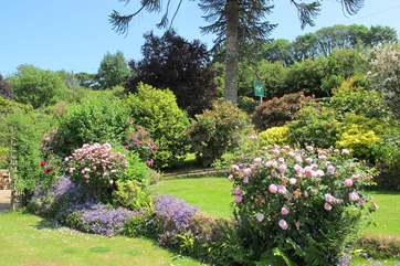 The stunning shared gardens.