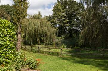 Another view of the fenced wildlife pond.