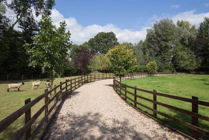 The grand entrance, with paddocks to either side.
