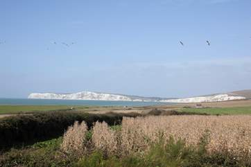 Look out to the gorgeous white cliffs of the Isle of Wight, a remarkable scene to be appreciated