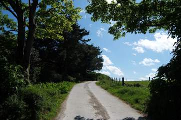 The private lane leading to Nanteague Farm.