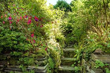 The steps leading up to the garden.