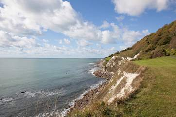Explore the cosmopolitan town of Ventnor or take a walk to the beautiful Steephill Cove