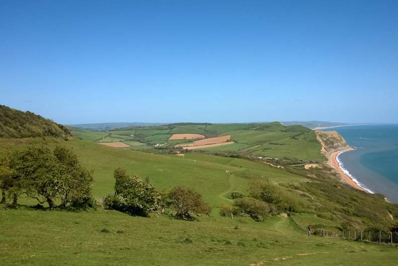 This is the view from the top of Golden Cap - Dorset's iconic landmark an easy drive across the east Devon border.