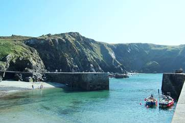A visit to the harbour at Mullion Cove is a must.