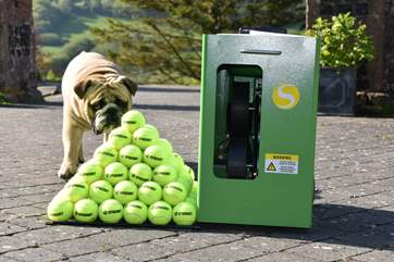 Guests may use the owner's tennis ball machine by prior arrangement, although the ball boy is not included!