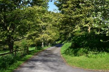The drive way leading from Barnell Cottage to the lane.