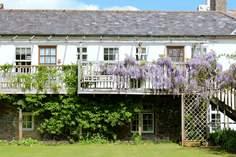 Wisteria Balcony Suite Sleeps 4 + cot, Dartmouth.