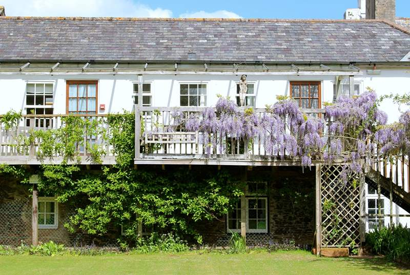 The stunning wisteria makes the front of this balcony suite very attractive indeed.