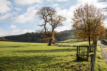 Even on a crisp autumn day this glorious countryside lights up.