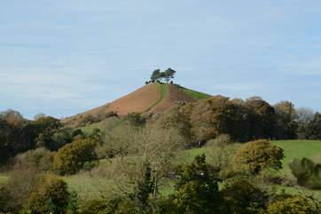 Colmer Hill is a famous local landmark, you're in Dorset near the quirky market town of Bridport and you're near the coast.