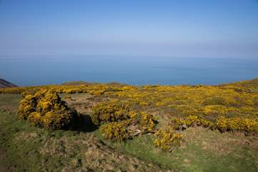 High up on the Quantock Hills above West Quantoxhead you can see right across the Bristol Channel to South Wales on a clear day.