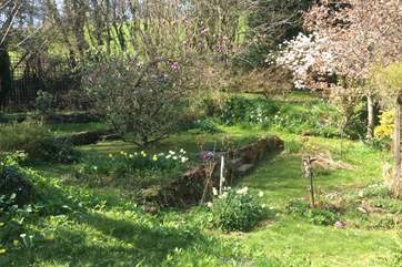 Your four-legged friends will have endless fun picking up the scents and trails left throughout this lovely enclosed garden.
