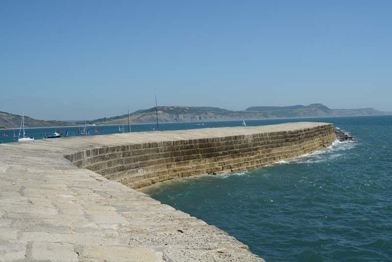The iconic Cobb at Lyme Regis, just over the border into Dorset.