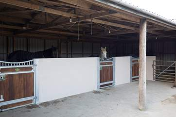 Your four-legged friend doesn't have to stay at home whilst you go on holiday, bring them with you and make the most of the stables.