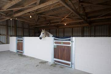 Why not bring your horse on holiday too? There are stables available to hire (at cost)