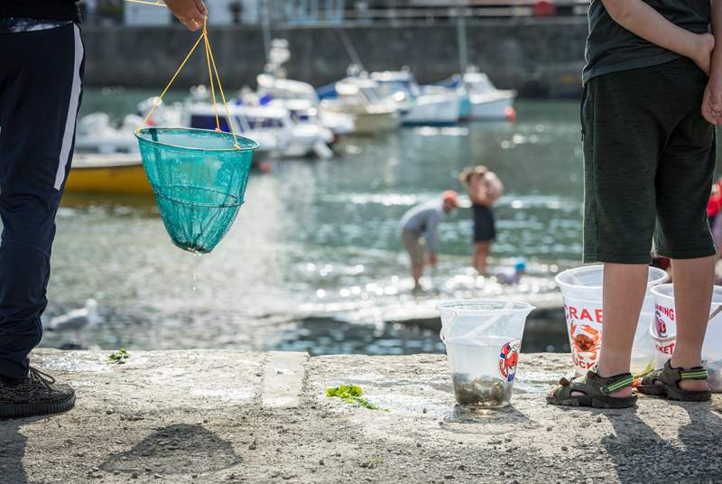 Appledore is a great place for crabbing - nostalgic for grown ups too.