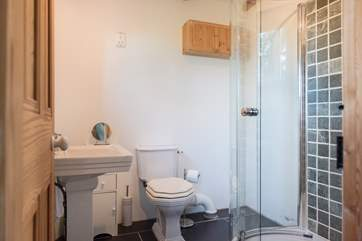 The downstairs shower-room at the back of the house.
