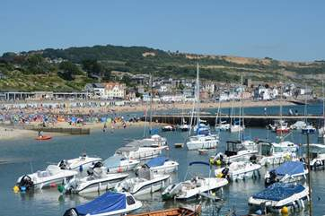 This is Lyme Regis with its famous Cobb Harbour and both sandy and pebbly beaches.