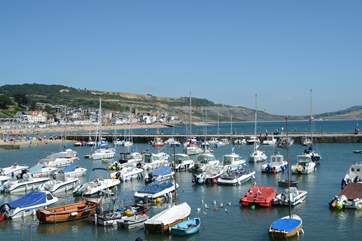 Lyme Regis is wonderful all year round, with the iconic Cobb, lots of cafes, restaurants, pubs, independent shops and a sandy beach.