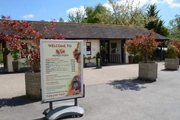 If you like primates, Monkey World is a rescue and rehabilition centre, just 8 miles from Beehive Cottage.