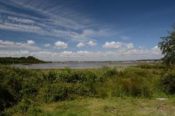 The RSBP nature reserve on Brownsea Island, home to many visiting birds.