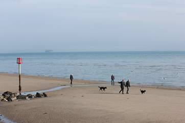 Make a holiday for your four-legged friend too and take them for a walk along the beach.