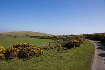 Exmoor National Park is just a short drive away, with the most incredible views, wide open space and tracks and paths to explore.