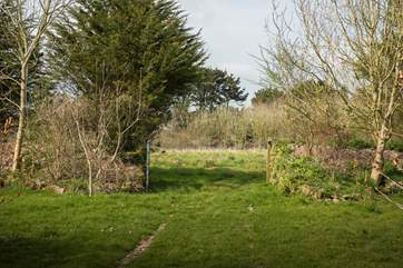 Explore the 10 acres of land and discover hidden wildlife.